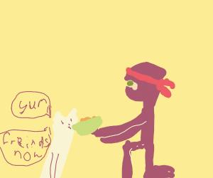 Ninja befriends cat with food