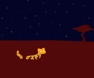Cheetah in the night