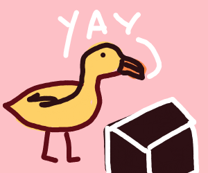 Ducks excited by a black box