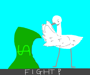 Money fights with a goose
