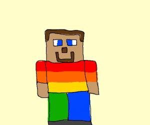 gay rights minecraft steve