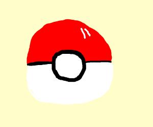 A pokeball