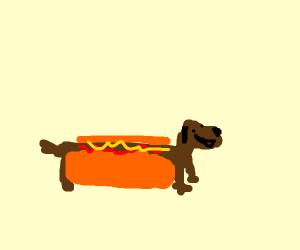 hotdog but its a Hot dog