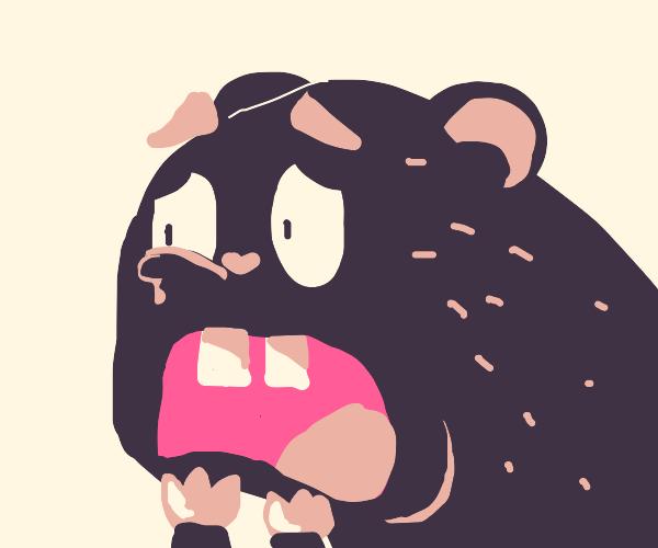 Scared beaver
