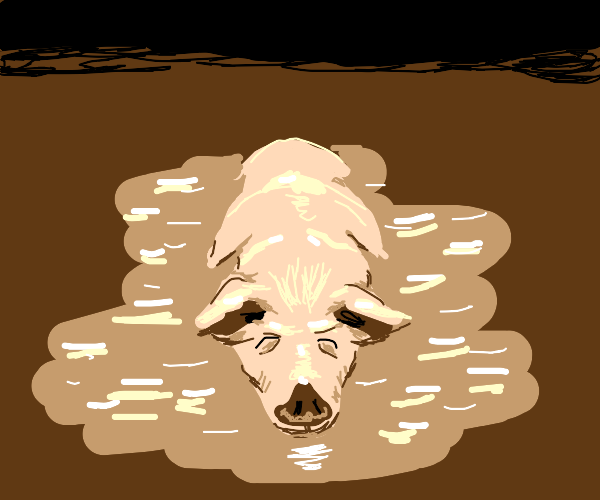 a pig in the mud