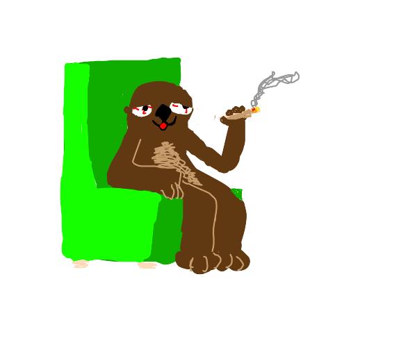 high otter