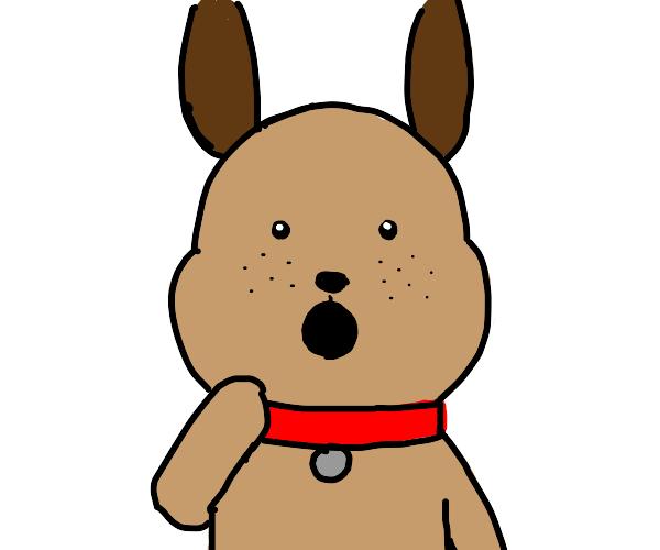 cute brown dog is surprised