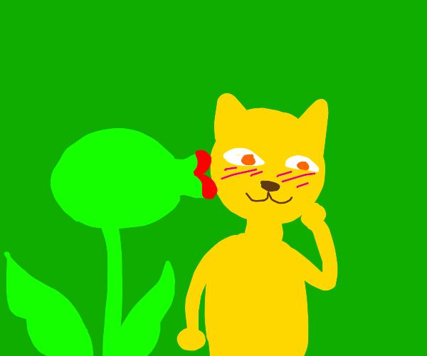 Plant monster kisses cat man
