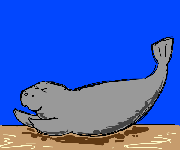Stretchy Manatee