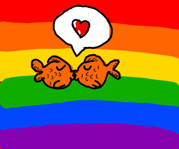 gay fish kissing eachother