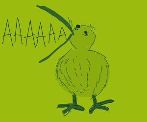 kiwi screams into the void