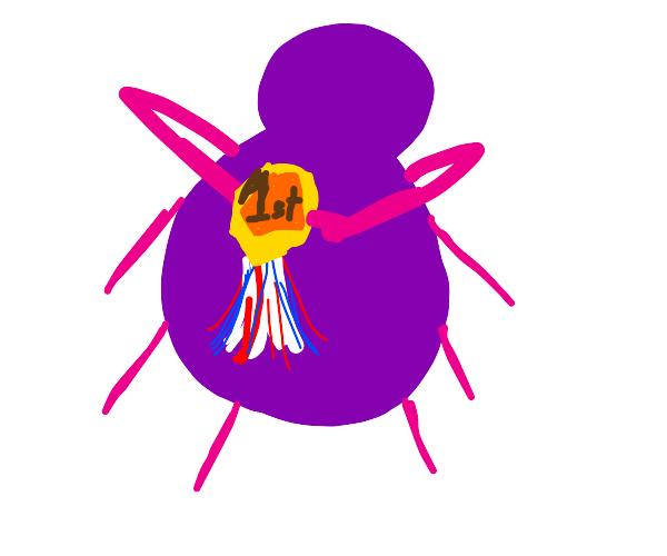 1st place purple spider
