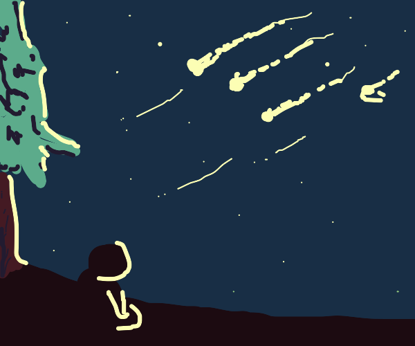Watching a meteor shower c: