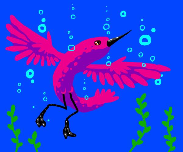 Aquarium Bird