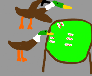 Ducks Playing Poker And Russian Roulette