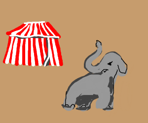 Elephant has had enough of the circus
