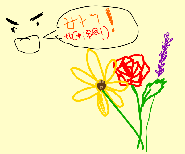 Shouting Korean expletives at flowers