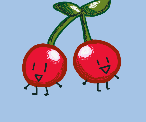 Two cherrys on one stem