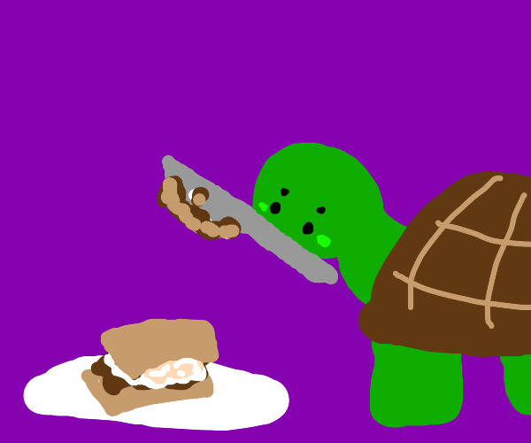 Turtle makes smores