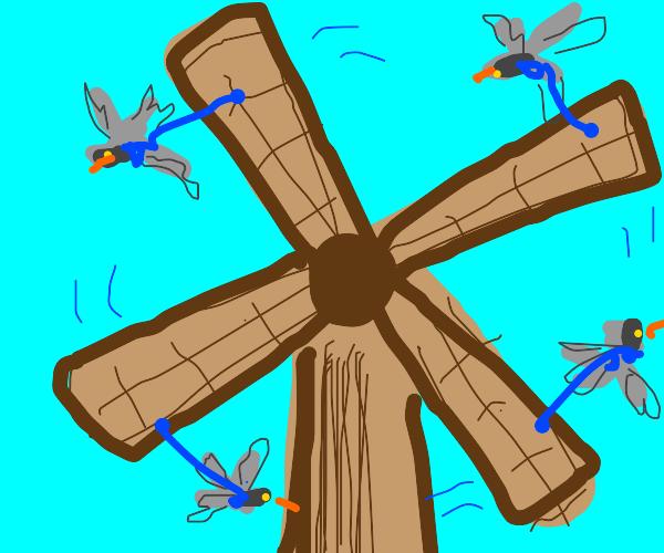 Pigeon powered windmill