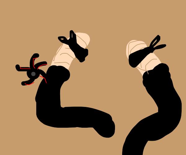 ninja worms