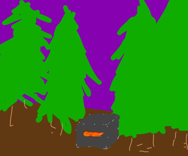 furnace n the woods