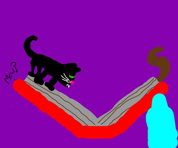 kitten scrapbook