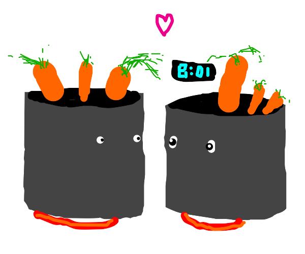 two carrot pots in love