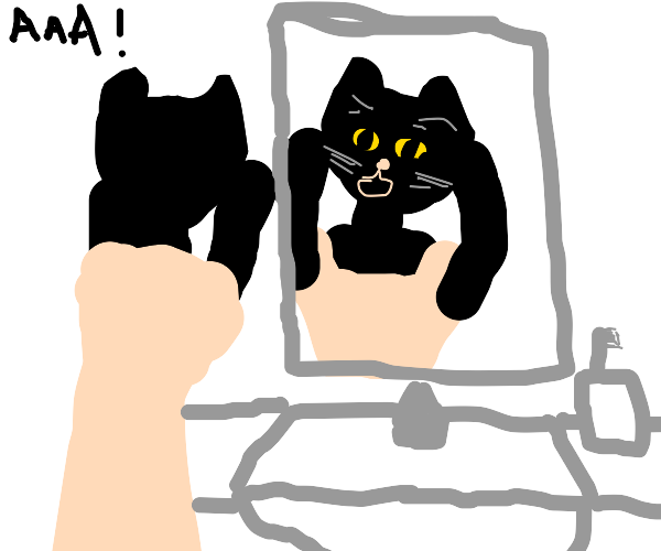 black cat screaming in the bathroom