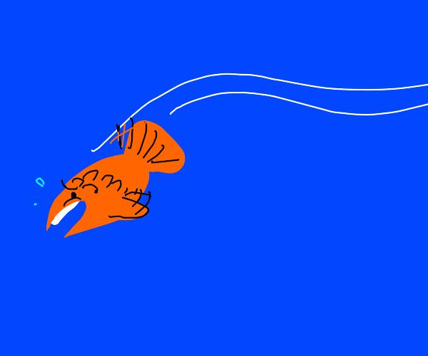 Worried fish swimming away