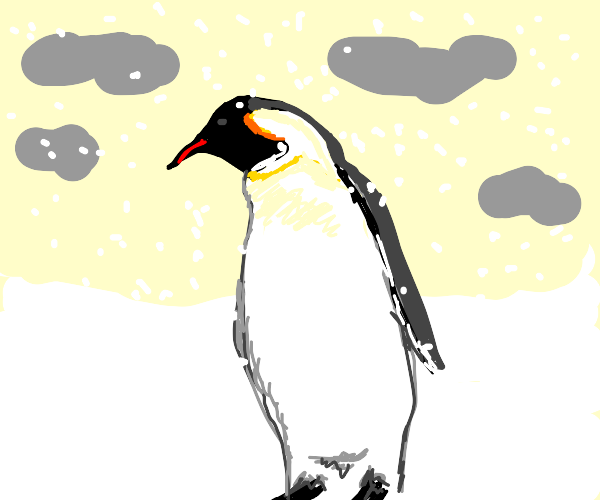 Penguin in a snowstorm