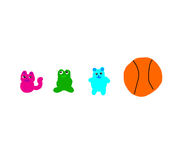 assorted cute animals smaller than basketball