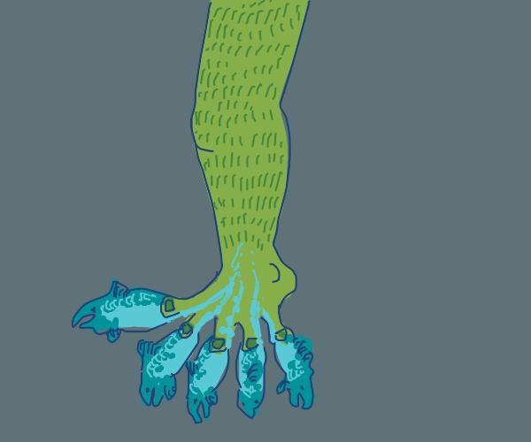 Salmon Toes
