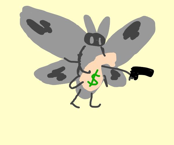 Killer moth steals money