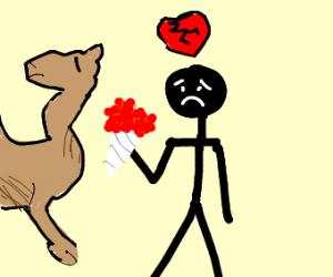 Camel breaks man's heart