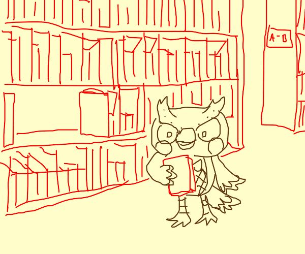 Friendly owl librarian