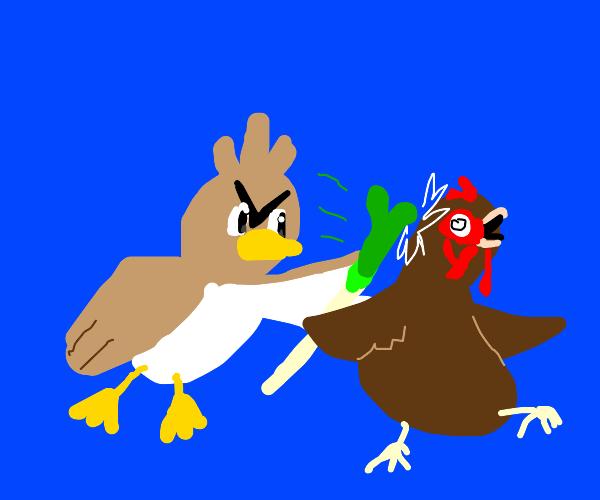 that duck pokemon fights against schicken