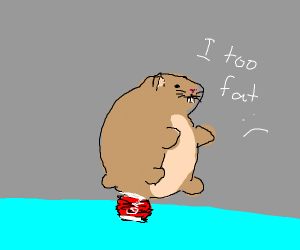 hamster crushes a soda can by sitting on it