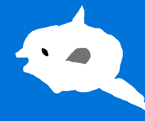 oceanic sunfish