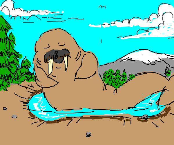 Walrus in smaller than average lake