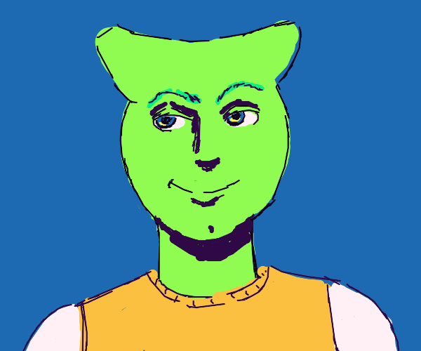 Green smug orange shirt cat ears guy
