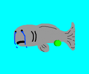 A crying fish swimming with green balls