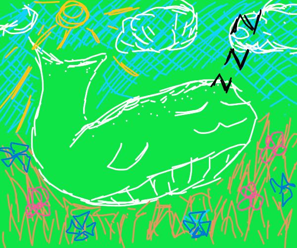 Gr. white whale sleeping in meadow
