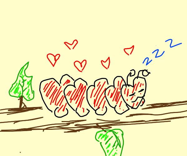 Love-er-pillar is snoozing