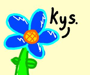 blue flower  kys