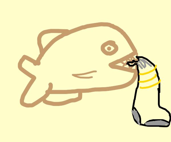 Piranha holding Socks