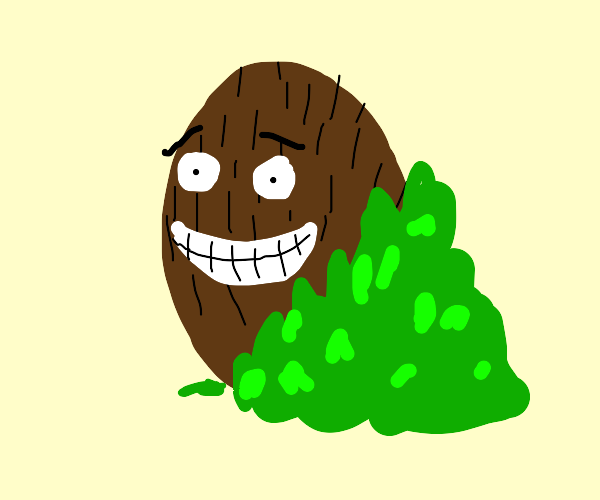 happy coconut comes out from behind leaves