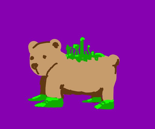 bear with green feet with plants on his bacc