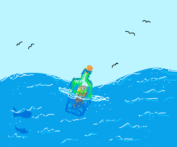A message in a bottle at sea