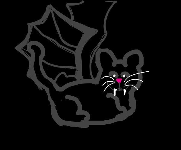 Black cat wears a bat costume
